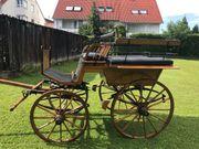 Großpferd Wagonette Pferdekutsche Linzer Stil