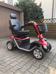 Senioren Elektromobil mit neuen Akkus