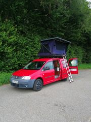 Wohnmobil VW Caddy Maxi mit