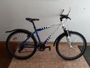 Damen Fahrrad 26 zoll