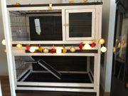 Kaninchenstall indoor