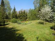 Gartengrundstück mit Bungalow bei Dresden