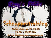 Kostenloses Pilates Online Schnuppertraining