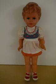 Schildkröt-Puppe