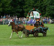 Verk Ponybierwagen