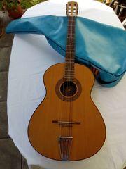 Gitarre mit Hülle