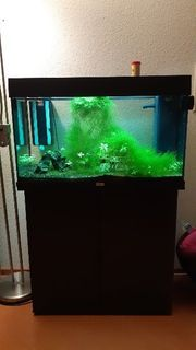 Aquarium Juwel 120 Liter mit