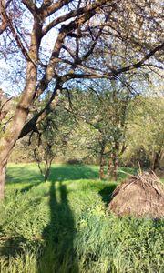 Gartengründstück Wiesengrundstück