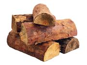 Ofenfertiges kiefern Brennholz