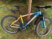 Fahrrad Stevens gebraucht