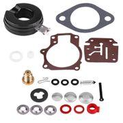 Vergaser Reparatur Johnson Evin 392061