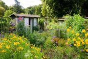 Garten in Schriesheim gesucht
