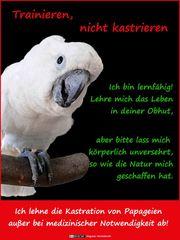 Papageienfreunde Whatsapp Gruppe