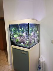 Eheim Aquarium 60x60x60
