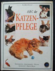 ABC der Katzen Pflege - Andrew