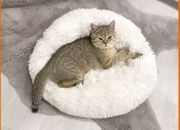 Haustierbett Schlafsofa Katzen Hunde 50cm