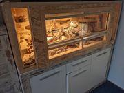 Terrarium mit Geckos 150x60x60