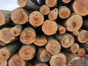 Eschen Brennholz 28EUR rm frei