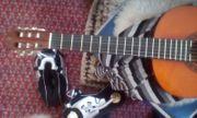 Biete eine schöne Konzert Gitarre