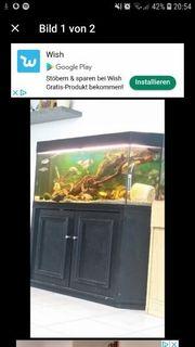 260liter Aquarium