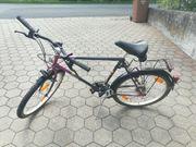 EMS Touring Herren Fahrrad gebraucht