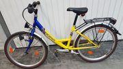 Jugendfahrrad Winora Ruff Rider 24