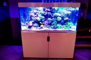 Meerwasseraquarium Eheim Incspiria Marine 400