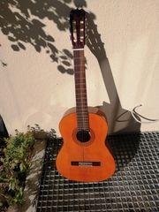 Chinchilla Gitarre