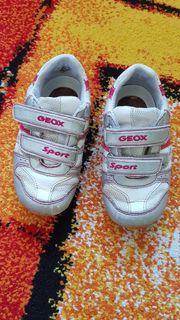 Geox Sport Kinder Turnschuhe Gr