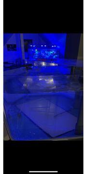 Aquarium sechseckig