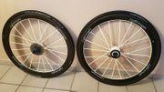 Lightweight C Carbon Clincher Laufräder