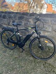 e bike Pegasus Solero E8