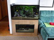 Aquarium komplett 630 L