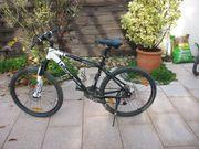 Mountain-Bike 17 43 cm
