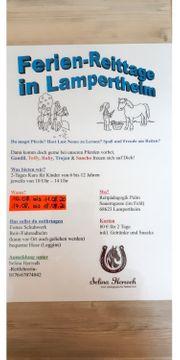 Reiterferien für Kinder 2-Tage in