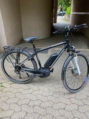 E-Bike Dynamics