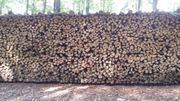 Brennholz hart trocken 12 5RM