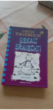Gregs Tagebuch Eiskalt erwischt