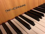 Wunderschönes Seiler Klavier
