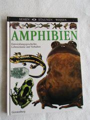 Amphibien Buch