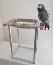 Papageien BADEWANNE Sittiche Vögel Edelstahl
