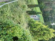 Herrmanns-Ferienhaus im herrlichen Steigerwald zu