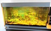Aquarium 200 Liter mit Filter