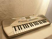 Farfisa Keyboard inkl DJ Style