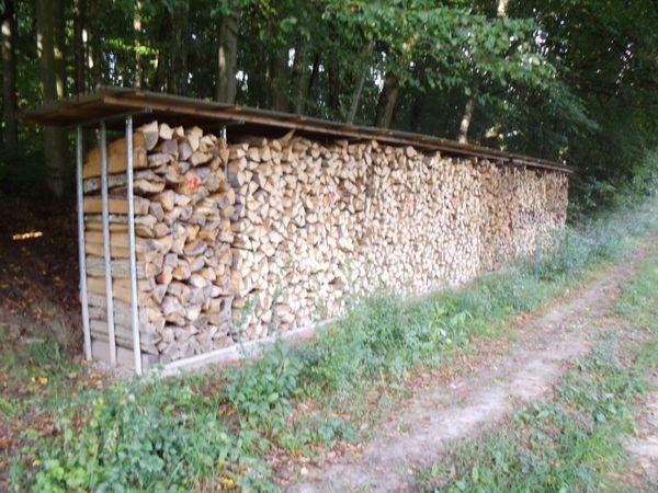 10 Rm Brennholz