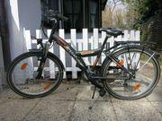 Fahrrad Pegasus 20 Zoll