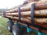 Brennholz als Stammholz oder als