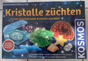 Kosmos Experimentierkasten Kristalle züchten NEU