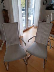 Tecta-Stühle