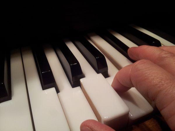 Professioneller Querflöten - Saxophon - und Klavierunterricht
